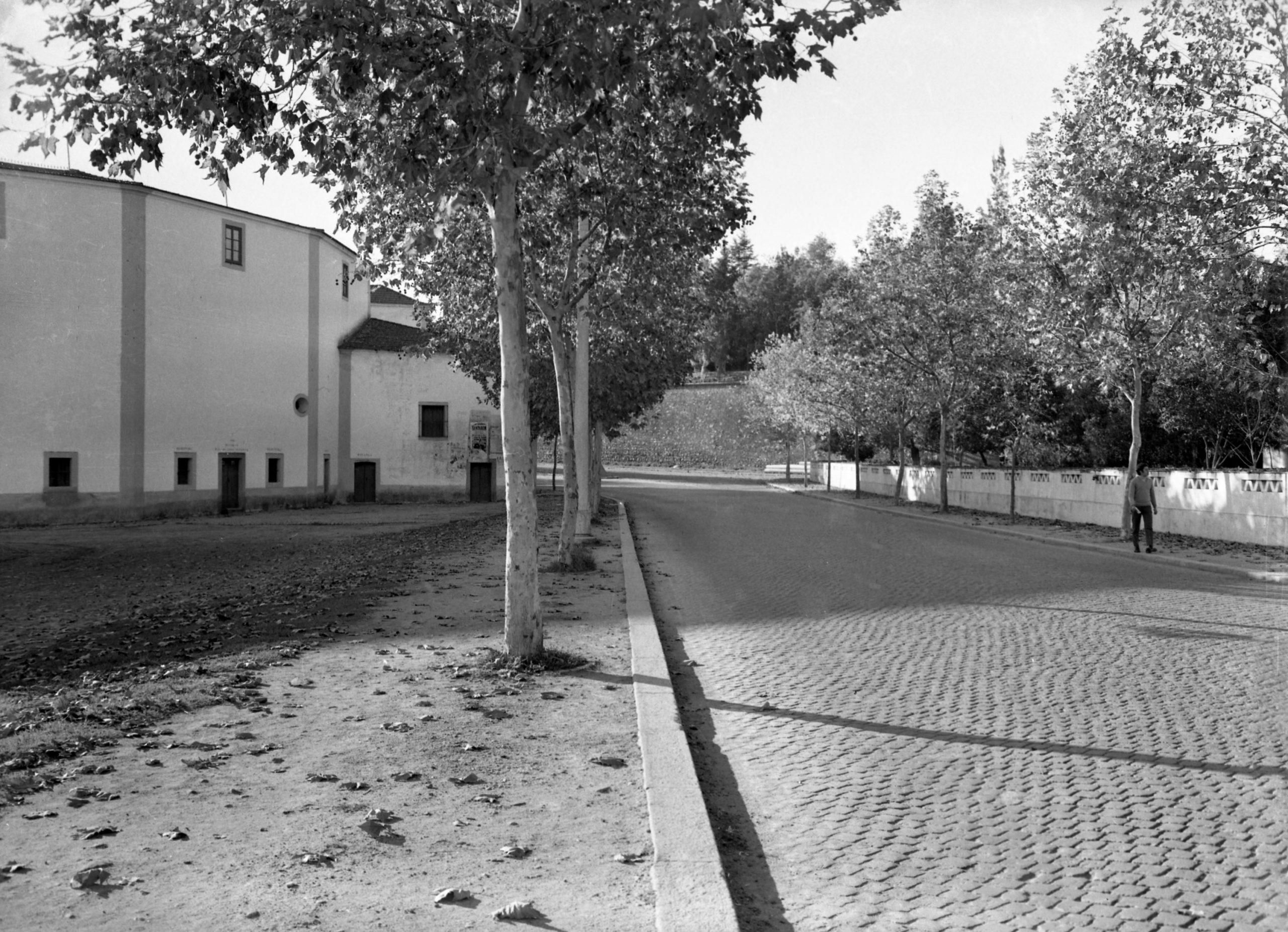 Praça de Touros de Évora - (David Freitas, CME, s/d)