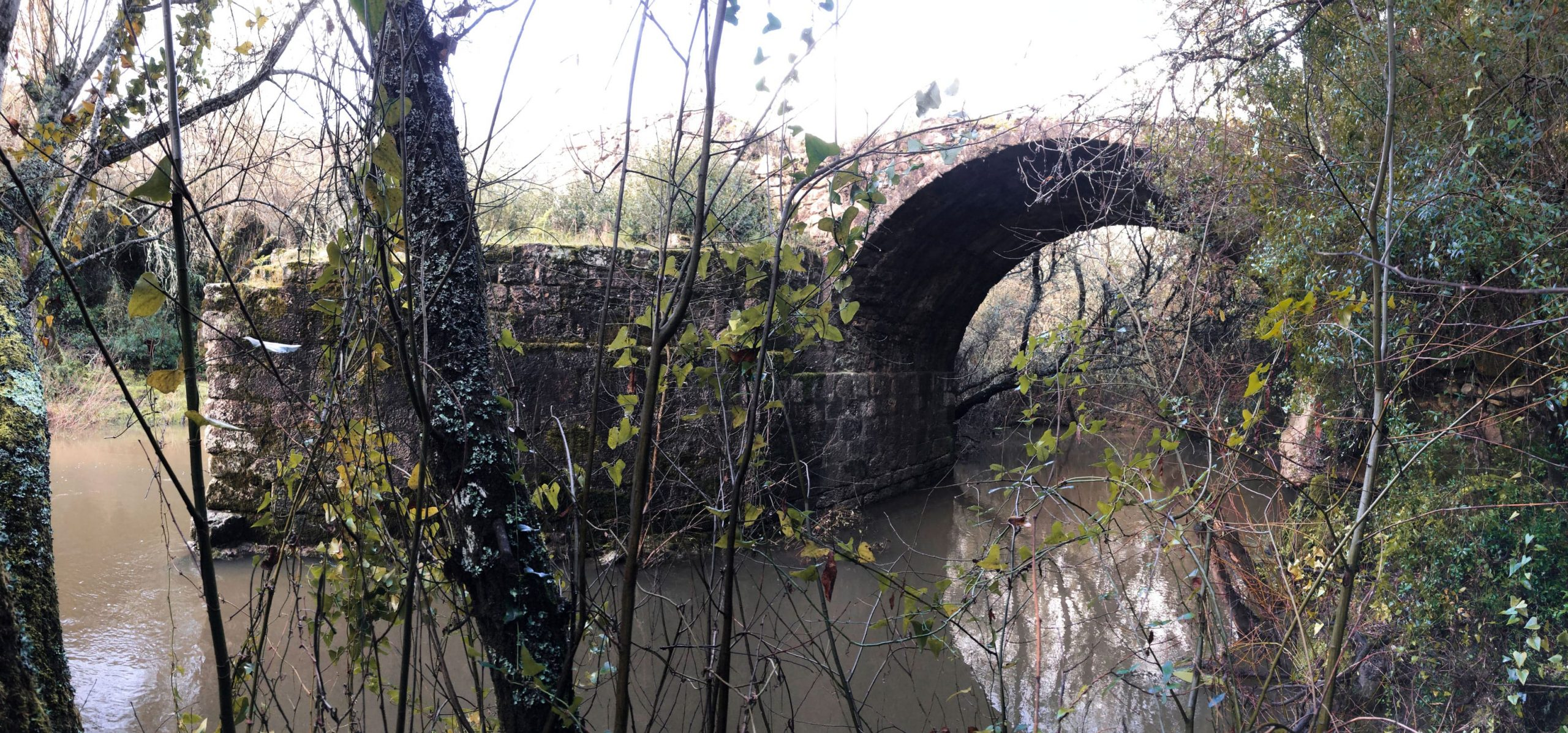 Ruínas da Ponte Cava (CMMN, 2019)