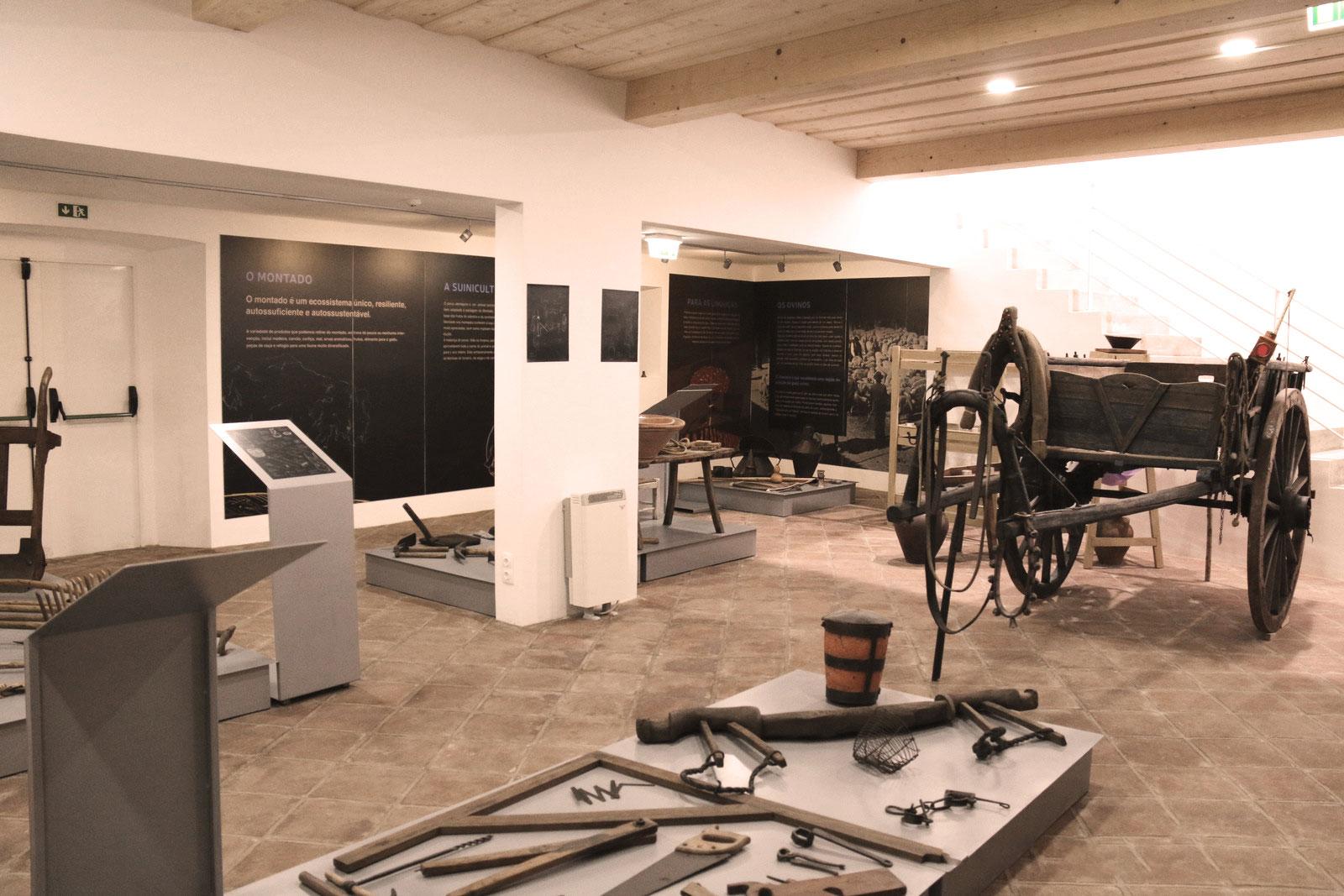 Centro de Etnologia - Museu Local (CMMN, 2019)