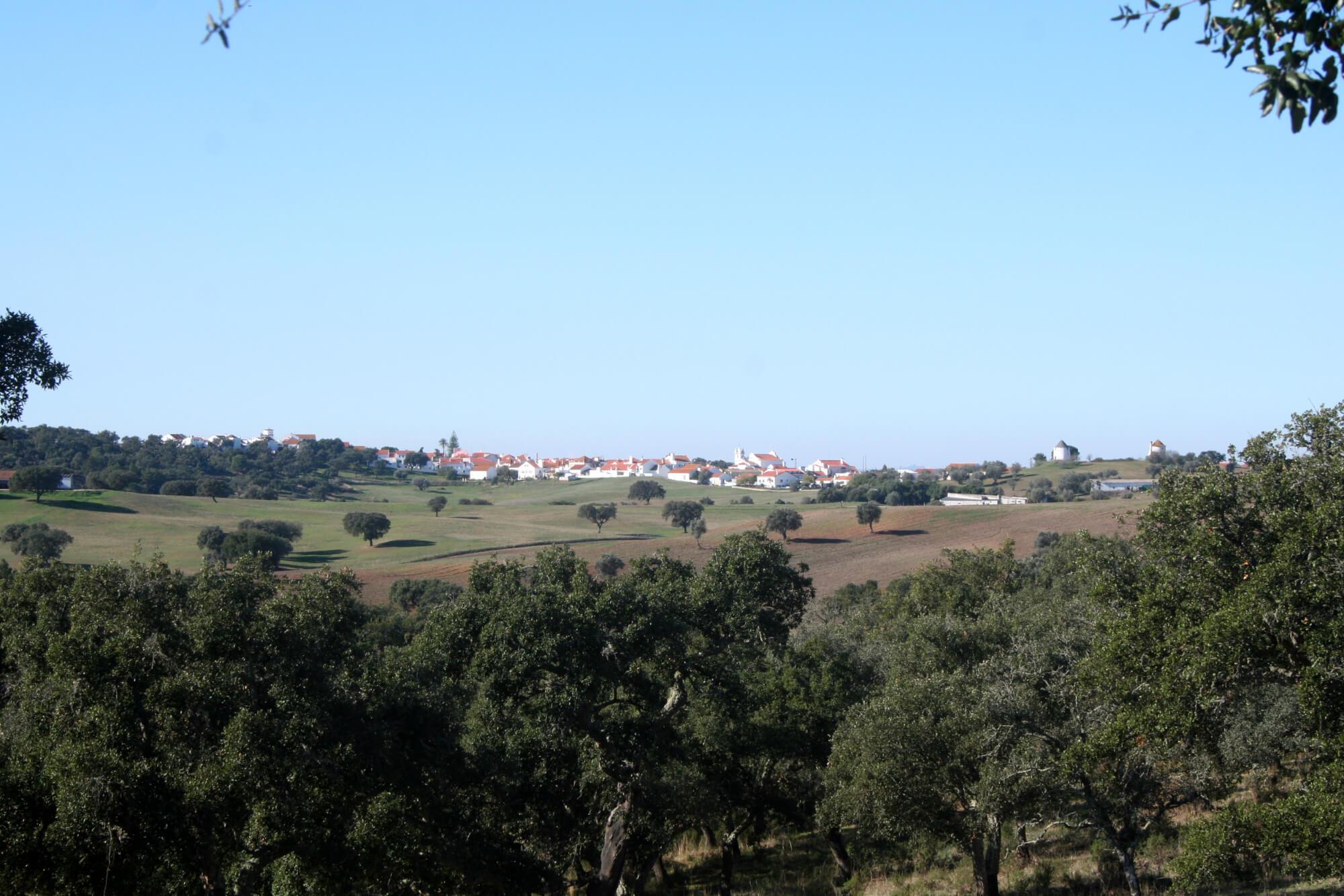 Vista Cabrela 03, 24.11.2007 (MJR)